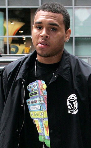 Chris Brown Daily on Chris Brown    Daily Gossip